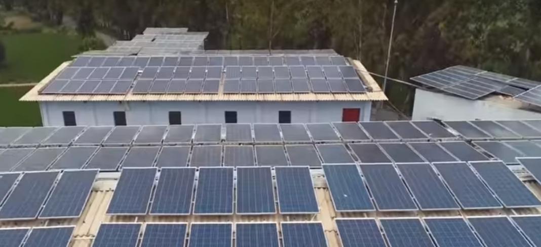 Solar Distributer Vs Dealer